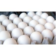 تخم مرغ - 1 کیلو